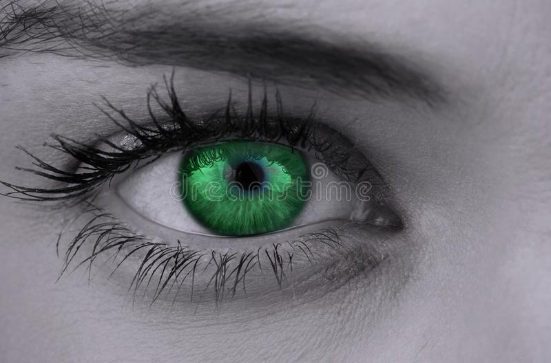 Bright green eye on female face royalty free stock photography