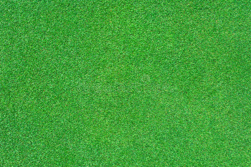 Bright green grass stock image
