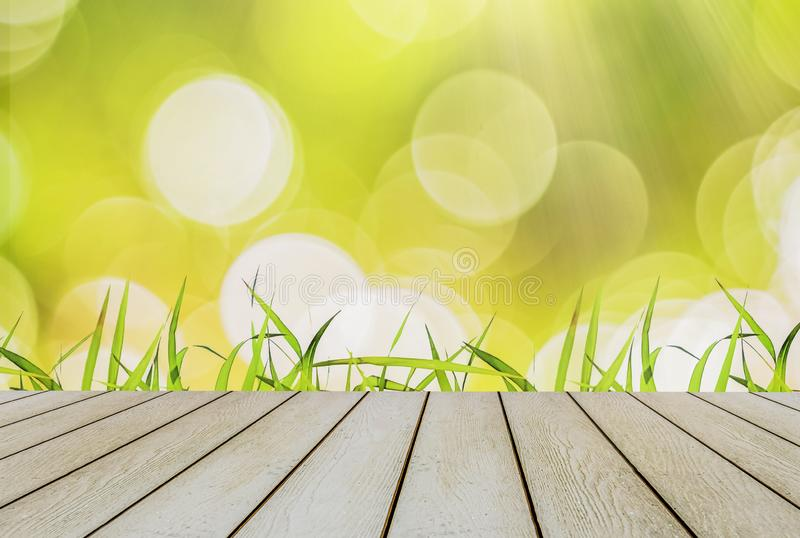 Bright green grass begins spring season. With yellow and bright bokeh with sunlight and wooden floor. Natural beauty Copy Space and Product Placement stock photo