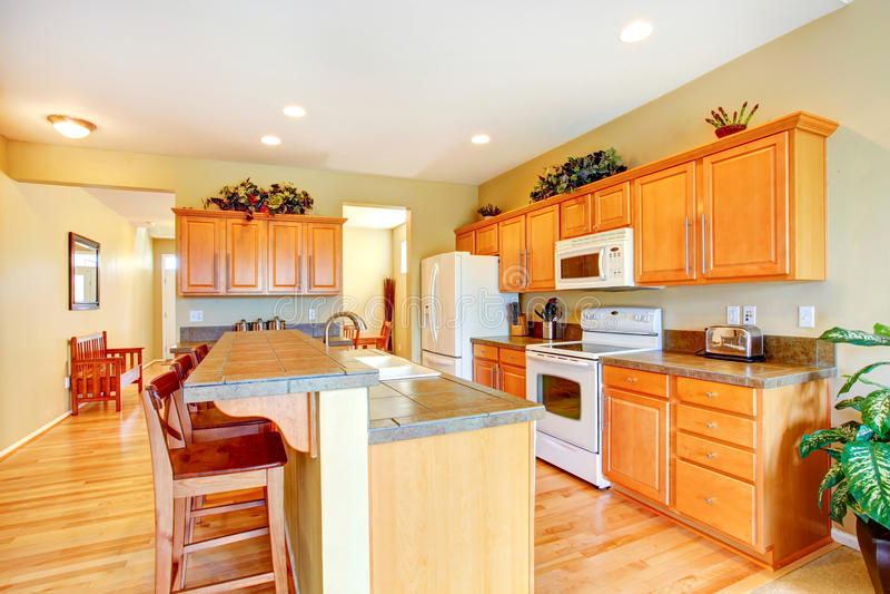 Download Bright Kitchen Interior Stock Photo - Image: 43461199