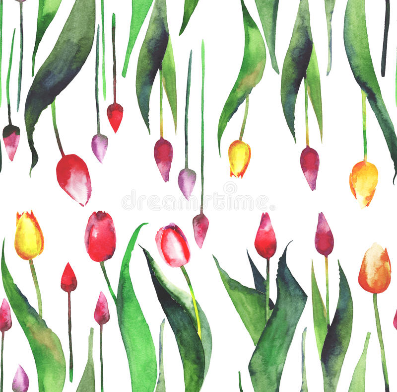 Bright lovely beautiful spring vertical pattern of tulips red yellow pink purple lavender flowers watercolor stock illustration