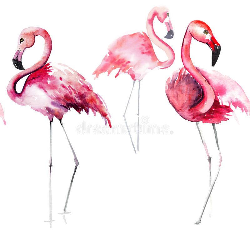 Bright lovely tender gentle sophisticated wonderful tropical hawaii animal wild summer beach pink flamingos pattern watercolor han vector illustration