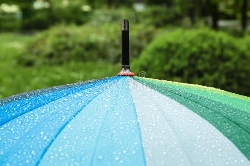 Bright modern umbrella under rain in green park, royalty free stock photo