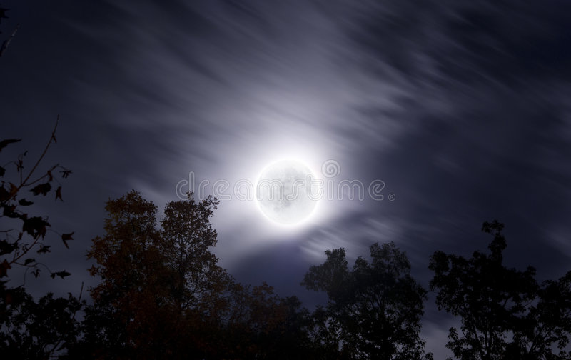 Bright moon on fall night with clouds and foliage royalty free stock photos