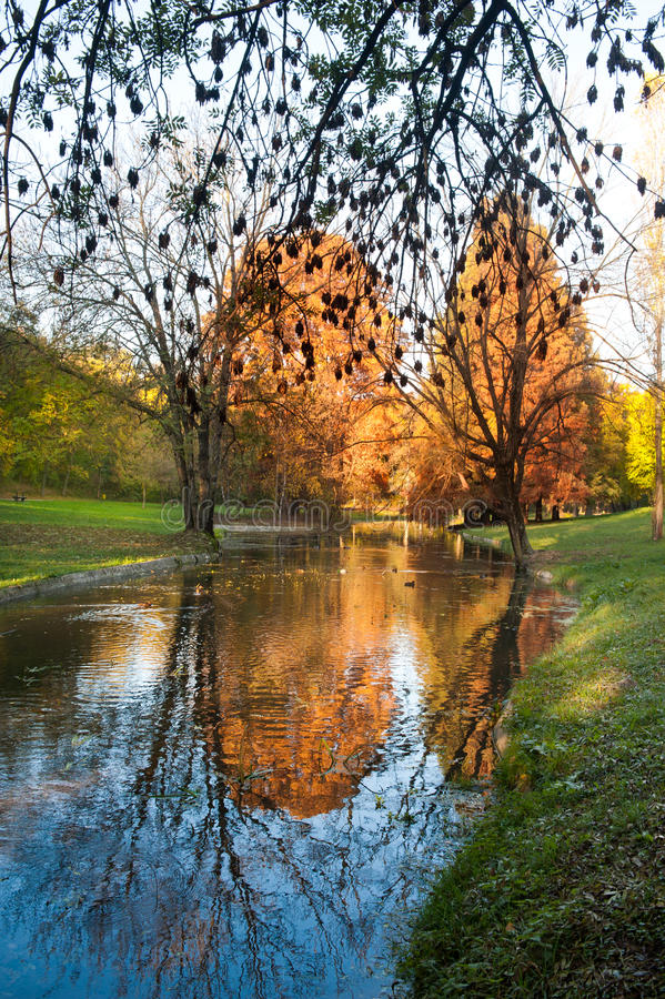 Bright morning over river in the forest. River and trees in fall. Autumnal morning with beautiful warm colors in park.  royalty free stock image