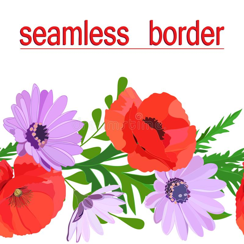 Bright multi-colored seamless border of summer flowers: red poppies, delicate lilac daisies, green leaves isolated on white vector illustration