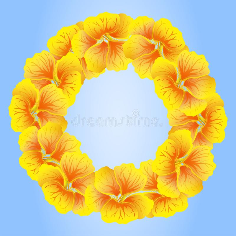 Bright Nasturtium wreath. Wild Yellow flowers. Beautiful Floral circle isolated on blue background. Vector illustration. Card stock illustration