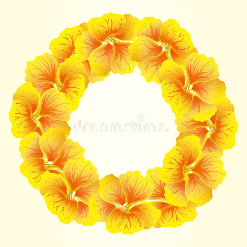 Bright Nasturtium wreath. Wild Yellow flowers. Beautiful�Floral circle isolated on light background. Vector illustration. Card stock illustration