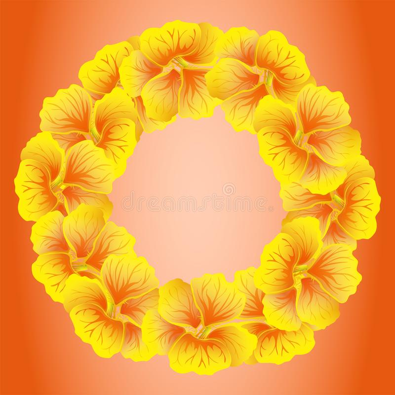 Bright Nasturtium wreath. Wild Yellow flowers. Beautiful Floral circle isolated on red background. Vector illustration. Card vector illustration