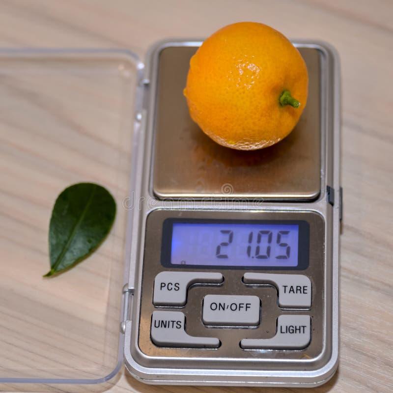 Bright orange calamondine fruit on the scales. Bright orange calamondine fruit on electronic scales stock photography