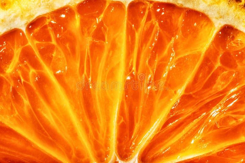 Bright orange citrus. royalty free stock photo