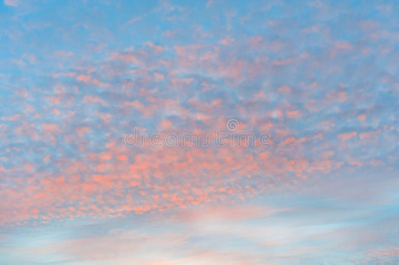 Bright orange clouds on a background of blue sky. Bright orange cirrocumulus clouds on a background of blue sky royalty free stock photos
