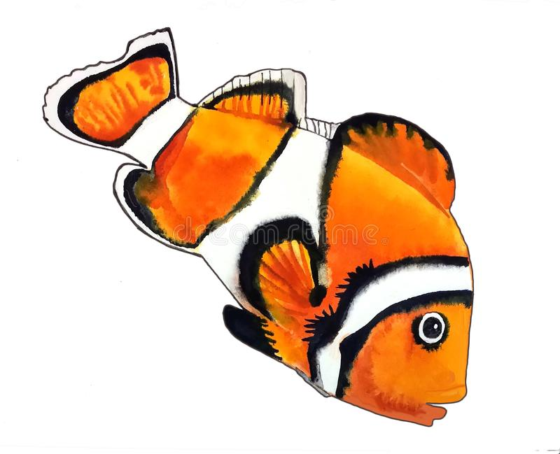 Bright orange fish with white stripe and black outline vector illustration