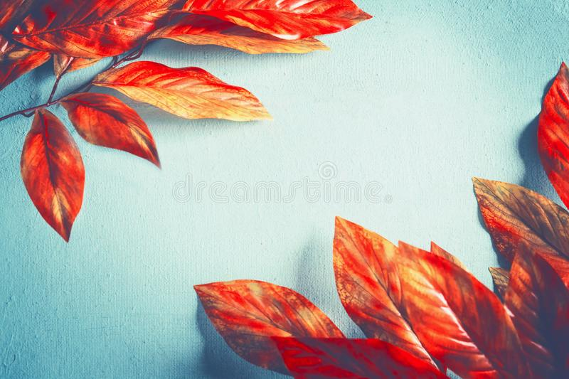 Bright orange red autumn leaves background on sunny turquoise , top view. Fall pattern stock photography