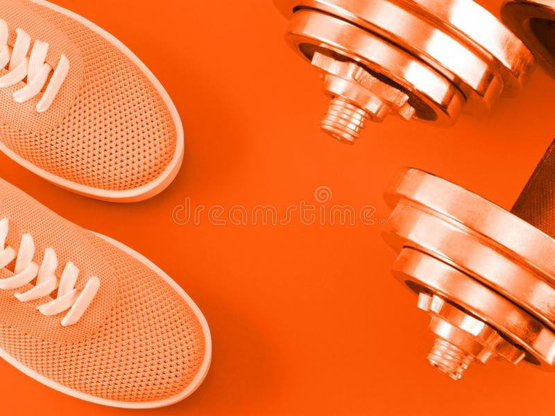 Bright orange sneakers on orange background with dumbbells. royalty free stock images