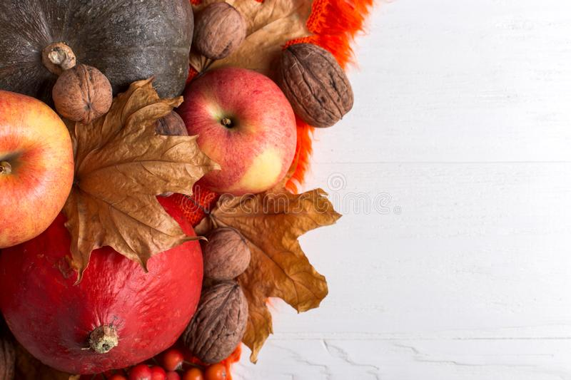 Bright orange warm shawl, pumpkins, berries, apples, nuts and dry yellow leaves on a white background, autumn mood, copy space. stock image