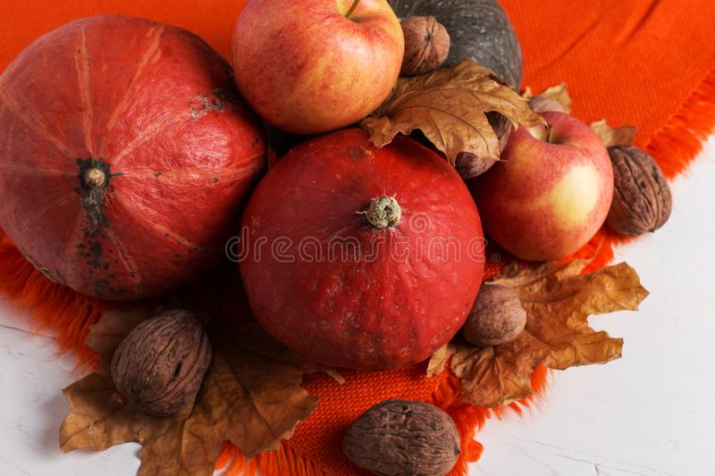 Bright orange warm shawl, pumpkins, berries, apples, nuts and dry yellow leaves on a white background, autumn mood, copy space. royalty free stock photos