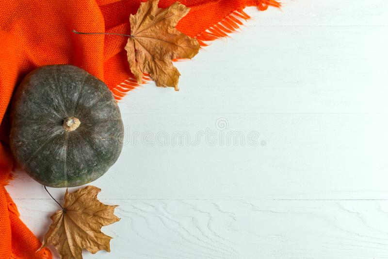 Bright orange warm shawl, pumpkins and dry yellow leaves on a white background, autumn mood, copy space stock photos