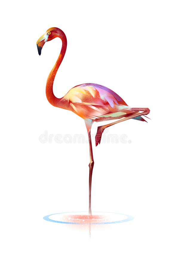 Bright painted bird flamingos on a white background royalty free stock image