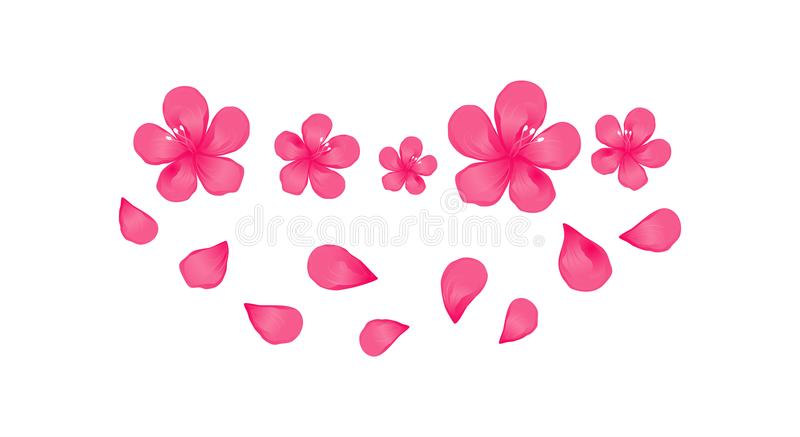 Bright Pink flowers and flying petals isolated on White background. Apple-tree flowers. Cherry blossom. Vector EPS 10 cmyk stock illustration