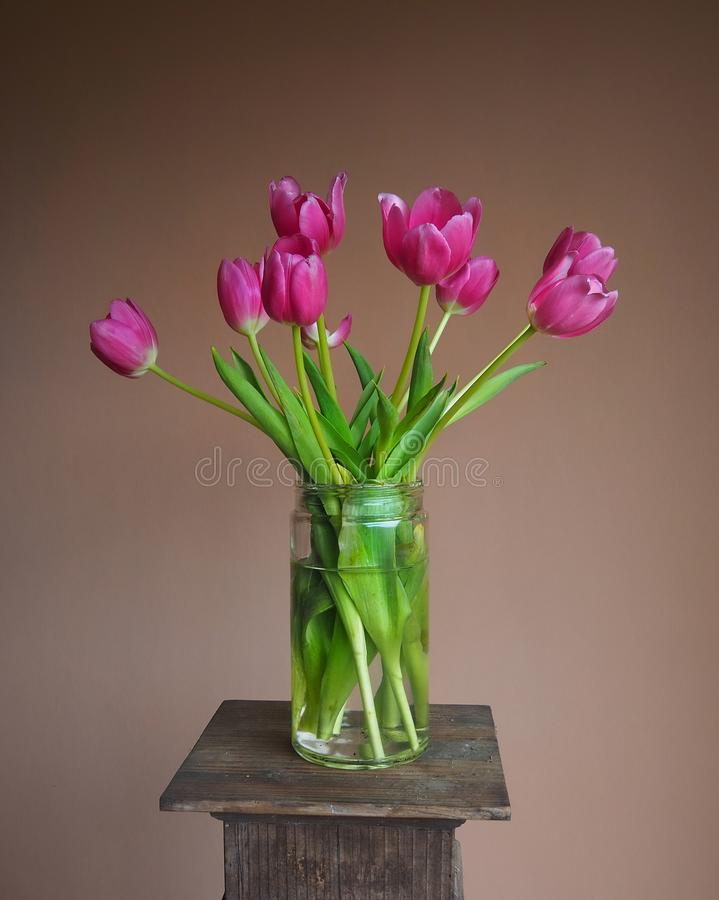 Bright pink tulip bouquet in a mason jar on a pedestal with terracotta background. Bright pink tulip bouquet in a large mason jar on a pedestal with terracotta royalty free stock photo