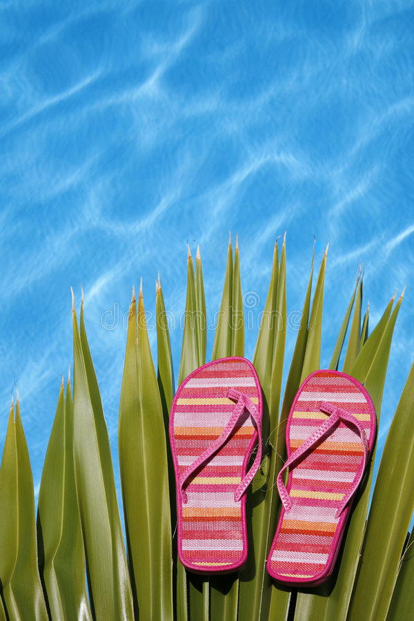 Bright Pool Shoes stock image