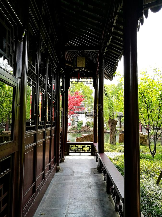 Bright red acer tree in Suzhou classical garden. A photograph showing a quiet corner inside a traditional classic design style Chinese garden park in the city of stock photo