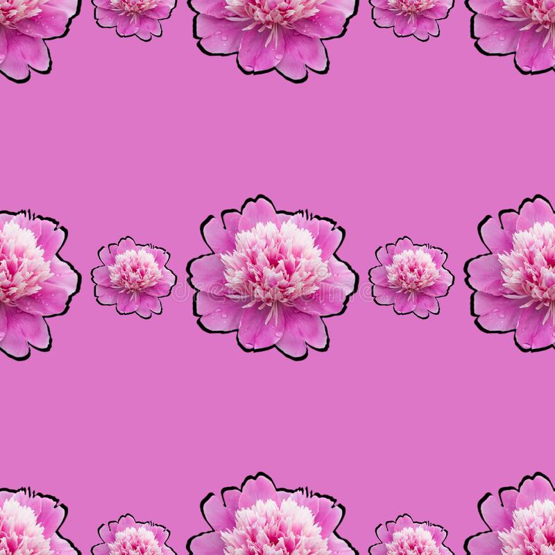 Bright repeating seamless pattern with pink peonies. Bright repeating gentle seamless pattern with pink peonies, flower, wallpaper, floral, background, summer stock image