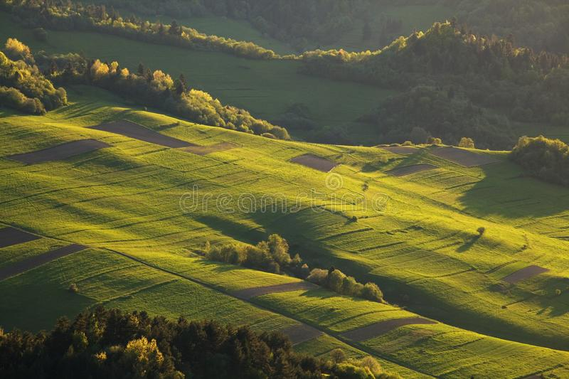 Bright rolling countryside in the evening light. Picturesque day and gorgeous scene in spring time. Carpathian mountains, Slovakia royalty free stock image