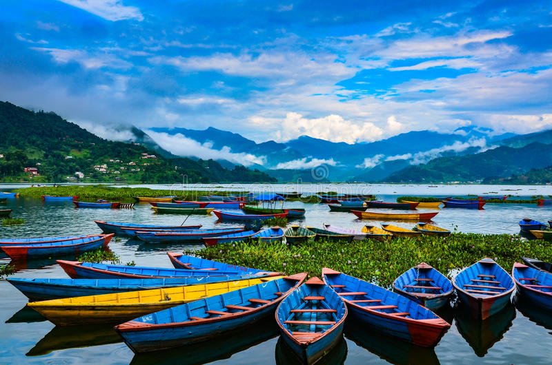 Bright Row Boats - Lake Phewa, Pokhara, Nepal. Colorful row boats docked on Lake Phewa in Pokhara, Nepal royalty free stock photos