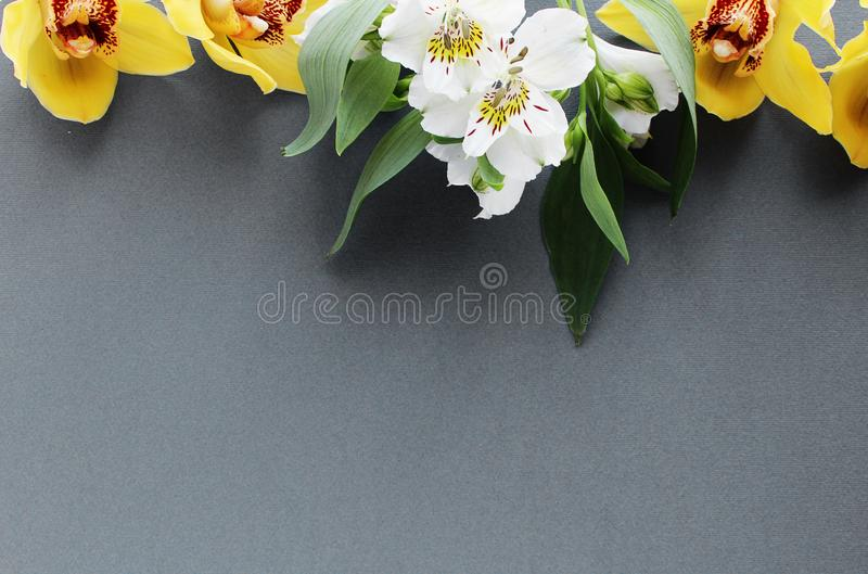 Bright spring bouquet flowers gray background stock images