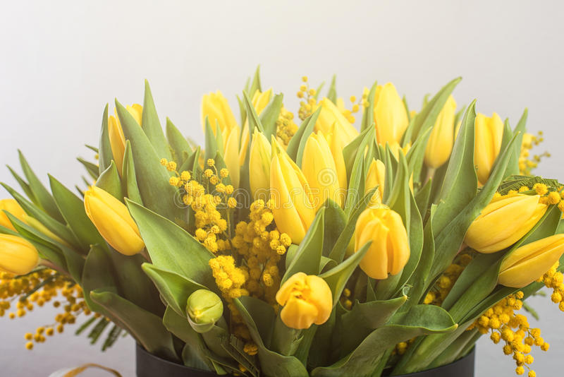 Bright spring bouquet of tulips and mimosa flowers. Mother's Day or Easter theme stock images
