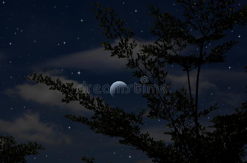 Bright stars in blue sky of waning moon night. Bright stars in blue sky and waning moon in the night of winter stock image