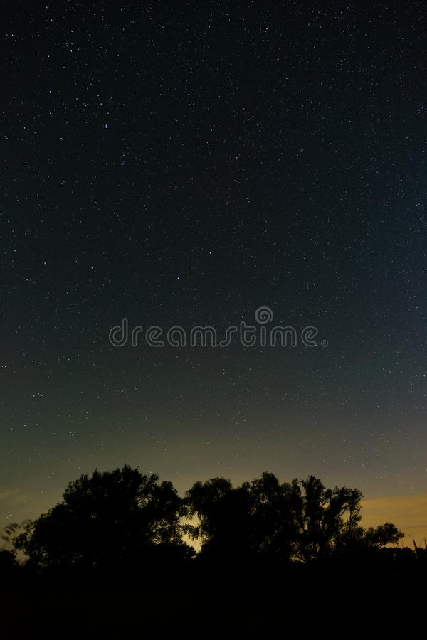 Bright stars in the night sky over the forest. Outer space photographed with long exposure.  royalty free stock photography