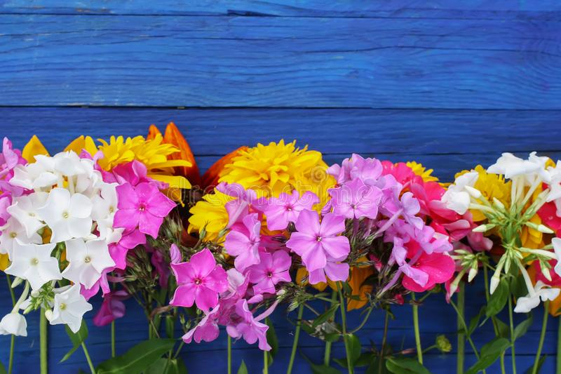 Bright summer flowers on colorful wooden boards. royalty free stock image