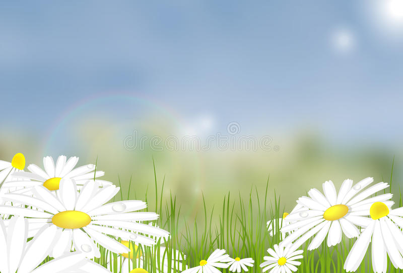 Bright summer vector background stock illustration