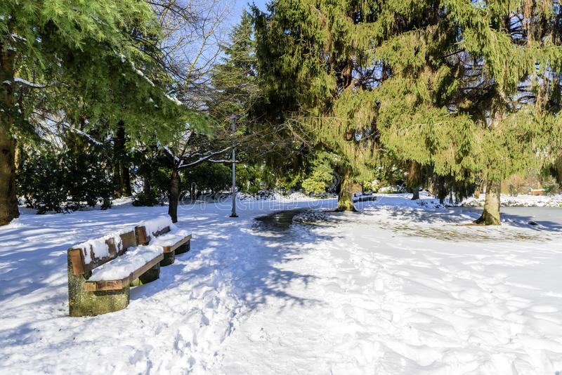 Bright, sunny winter day in a snow-covered city park with a lake stock images