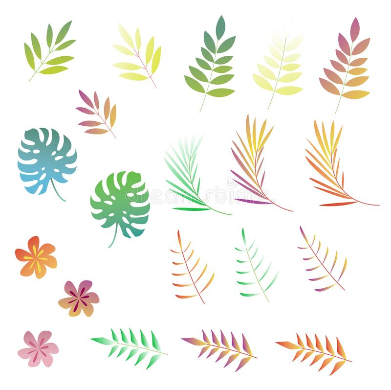 Bright tropical leaves & flovers stock illustration