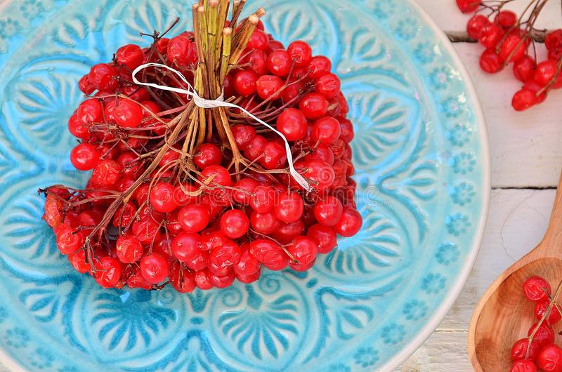 Bright viburnum on a blue plate royalty free stock photos