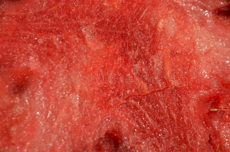 Watermelon 7 royalty free stock images