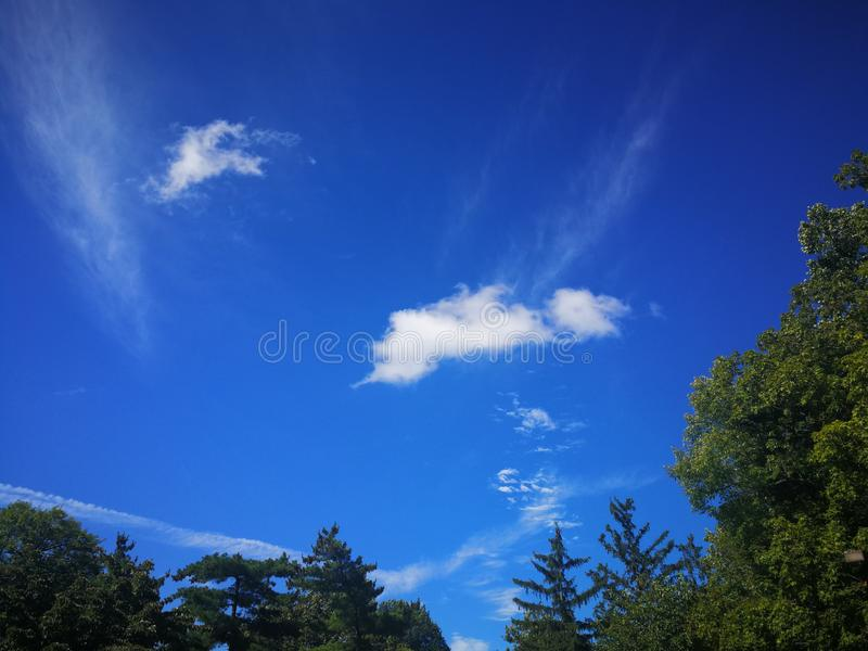 Bright white clouds in blue sky over green trees on Summer afternoon royalty free stock photos