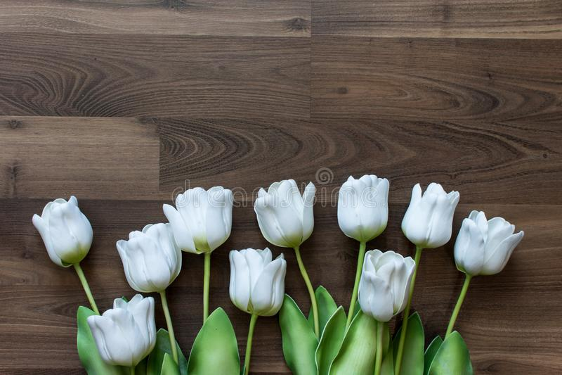 Fake tulips and on wood background. royalty free stock images