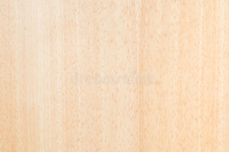 Bright wood texture royalty free stock photo