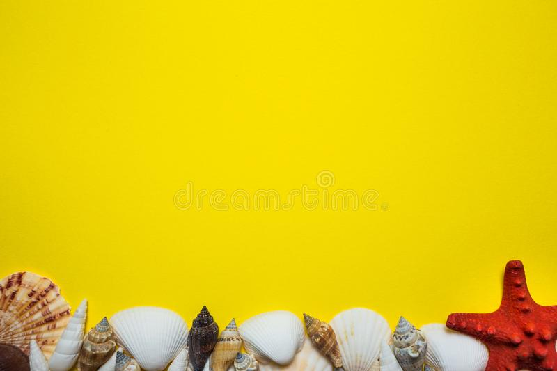 Bright yellow background in marine style with seashells, starfish and other marine attributes. For cards, frames, visual advertising stock image