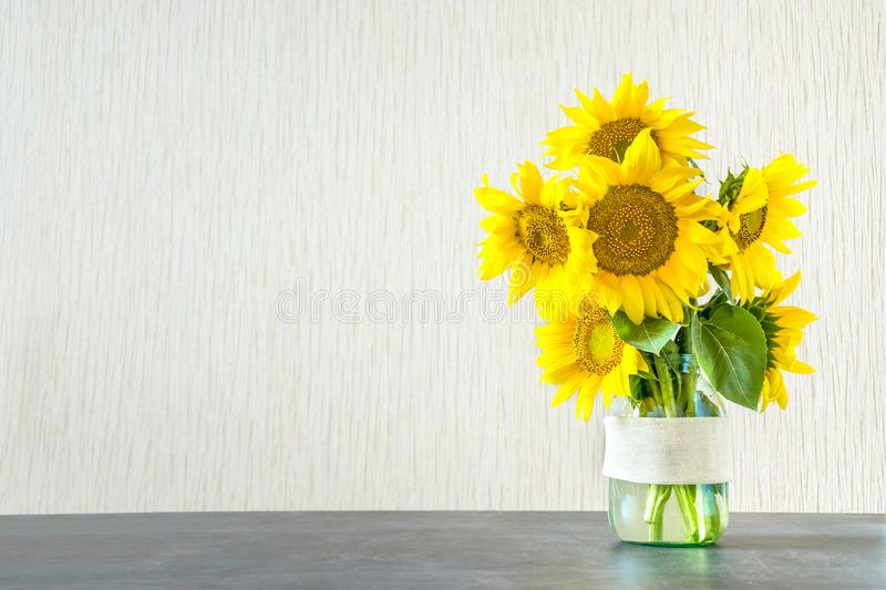 Bright yellow big sunflowers in glass vase on dark table on light texture background. Mockup banner with sunflower bouquet with c. Opy space stock photos