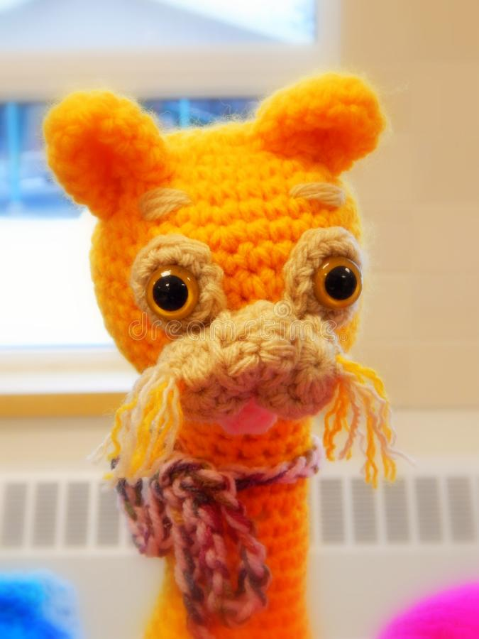 Sunny yellow knitted cat stock images