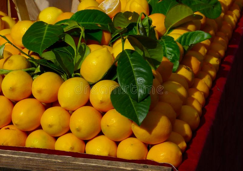 Bright yellow lemons and green leaves on display at market place stock photo