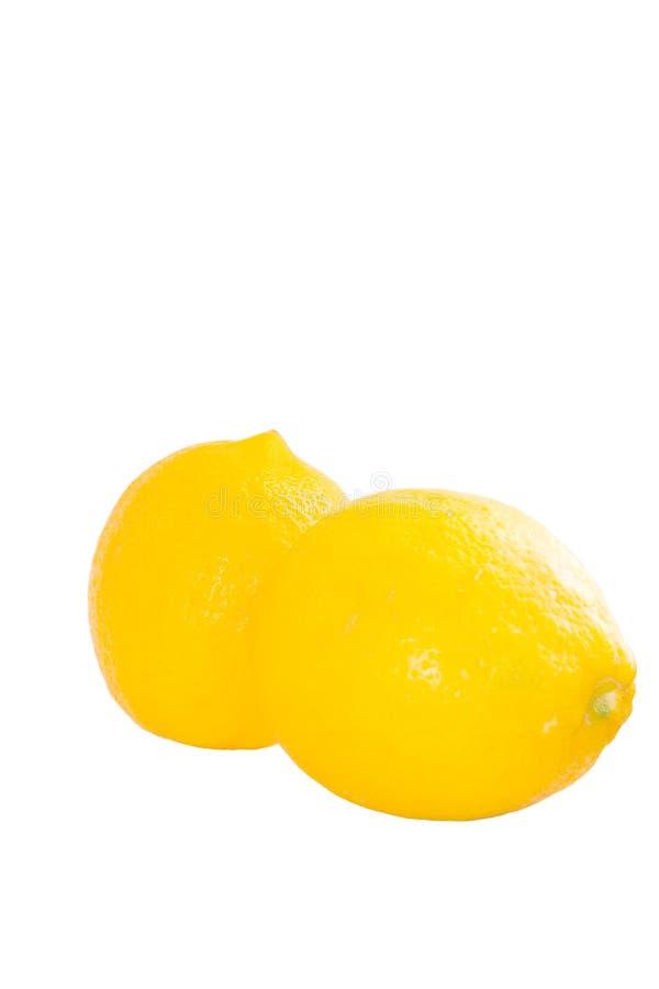 Bright Yellow Meyer Lemons On White Background