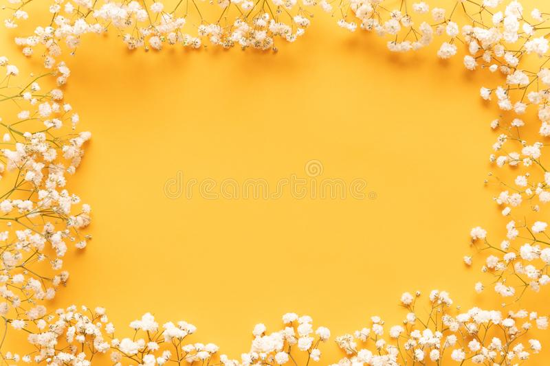 Bright yellow paper background with soft little white flowers, welcome spring concept. Happy Mothers Day, Womens Day greeting card. Bright yellow paper stock images