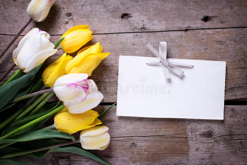 Bright yellow and white spring tulips and empty tag stock photo